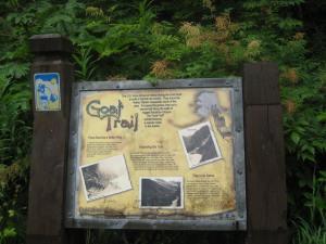 """""""Goat Trail'"""