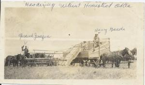 Headering Wheat - Oklahoma - Henry Gaede and Frank Janzen