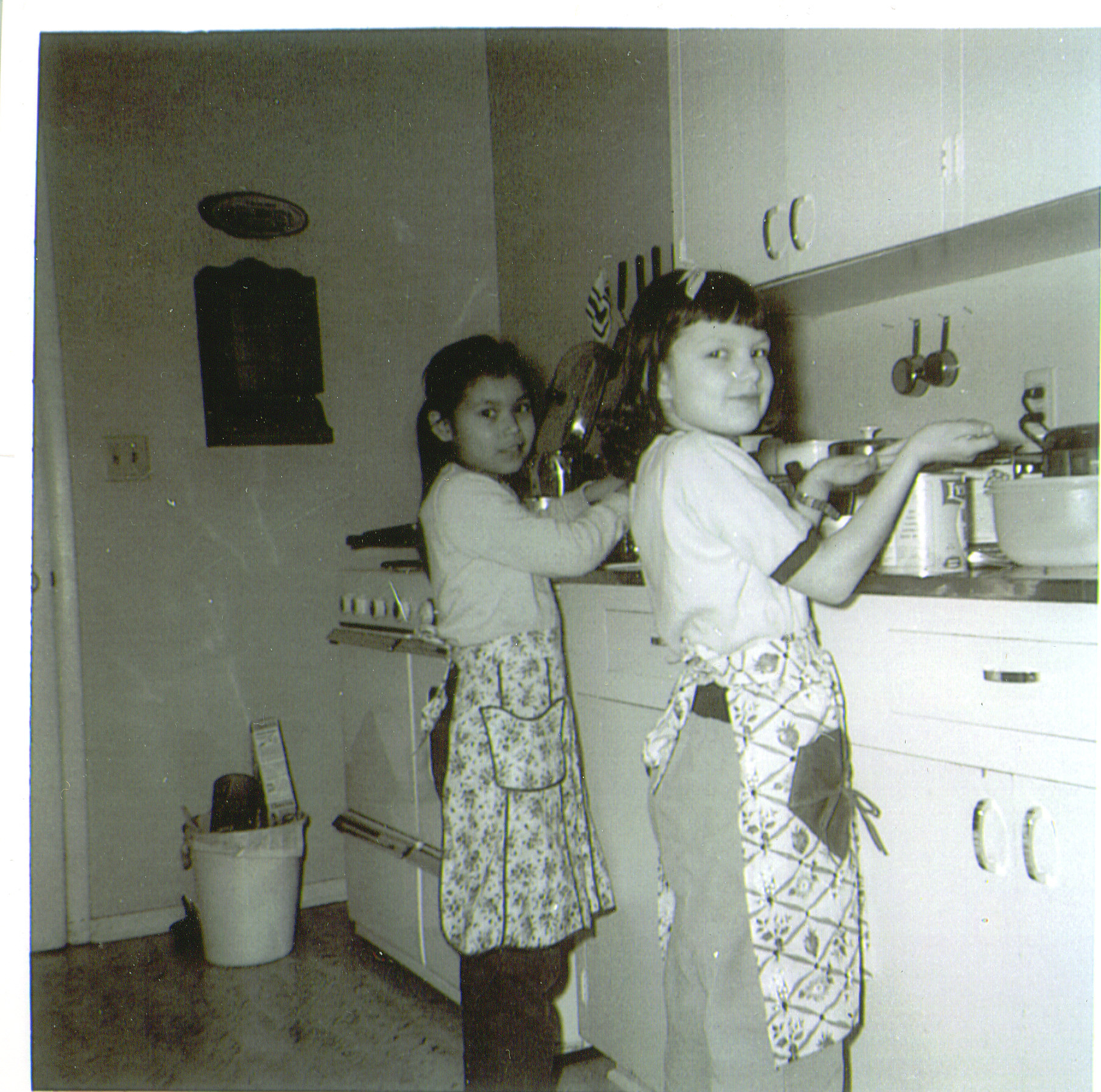 Naomi-Sally Woods cookies Tanana jpg